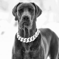 Great Dane XL Matt Silver Dog Chain Collar