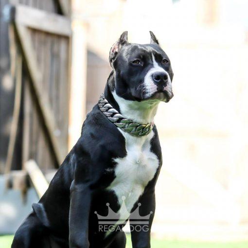 Black XL Bully Silver Dog Chain