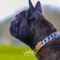 French Bulldog Two Tone Chain Collar