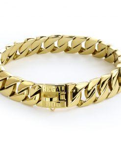 Gold Dog Chain Collar