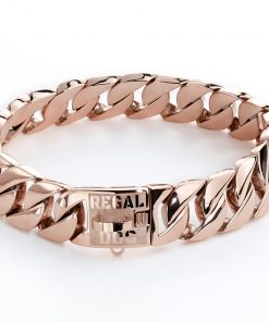 Rose Gold Dog Chain Collar