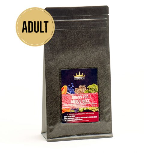 Premium Complete Dog Food with Beef