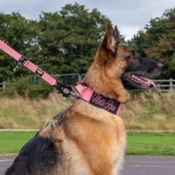 German Shepherd Pink Tactical Dog Collar And Lead