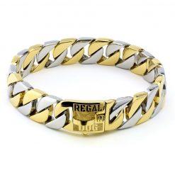 Gold Silver Chain Dog Collar