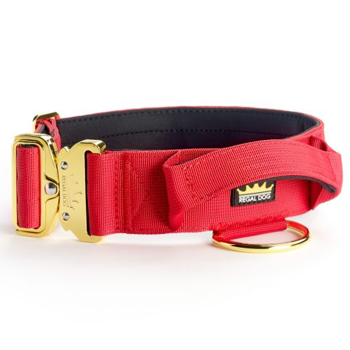 Red Gold Series Tactical Dog Collar