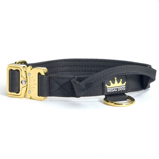 Black - Gold Series Tactical Dog Collar 2.5cm