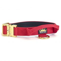 Red - Gold Series Tactical Dog Collar 2.5cm