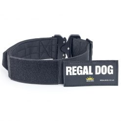 Black Tactical Dog Collar with patch