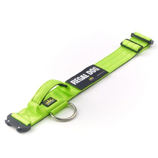 Green Tactical Dog Collar