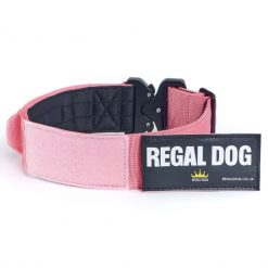 Pink Tactical Dog Collar with patch