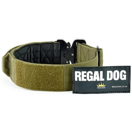 Khaki Tactical Dog Collar with patch