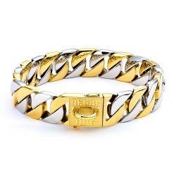 Gold & Silver Dog Chain Collar