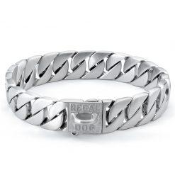 Matte Silver Dog Chain Collar